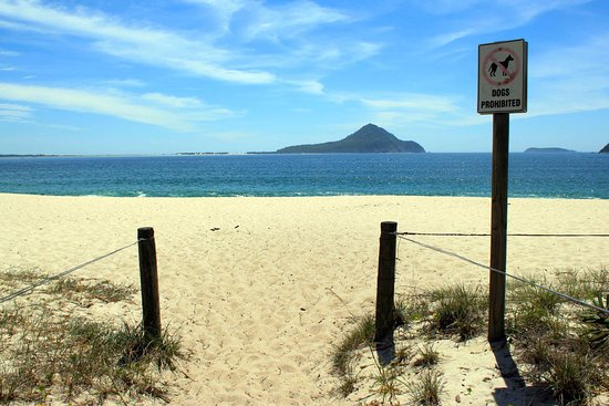 Shoal bay Beach adjacent to Halifax Holiday Park, Port Stephens