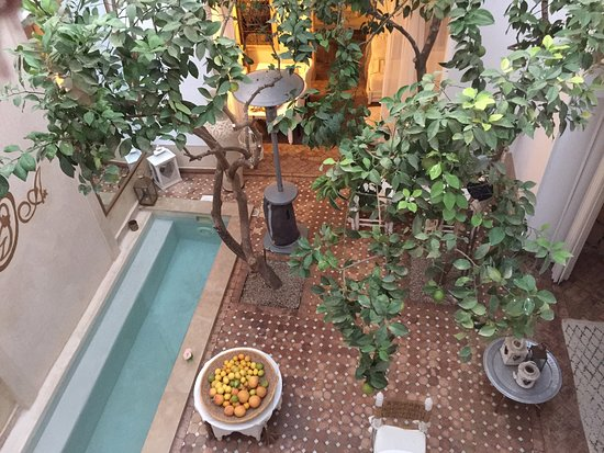Riad les Orangers d'Alilia Marrakech: The courtyard with a lemon tree