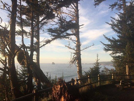 Brookings, Орегон: So beautiful here