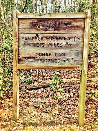 Tallulah Falls, GA: photo2.jpg