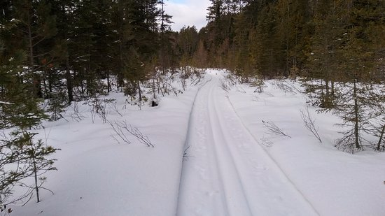 Isabella, MN: Frequently and well-groomed trail