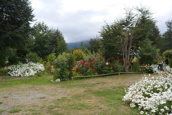 Bahia Murta, شيلي: Jardín florido