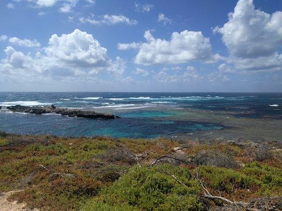 Best Rottnest Island Tour