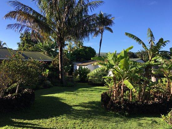 Chez Maria Goretti: Garden