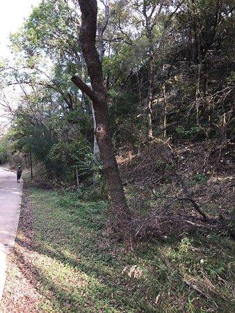 Cedar Park, TX: Brushy Creek Lake Park