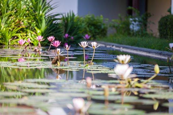 Grand Luang Prabang Hotel Tripadvisor