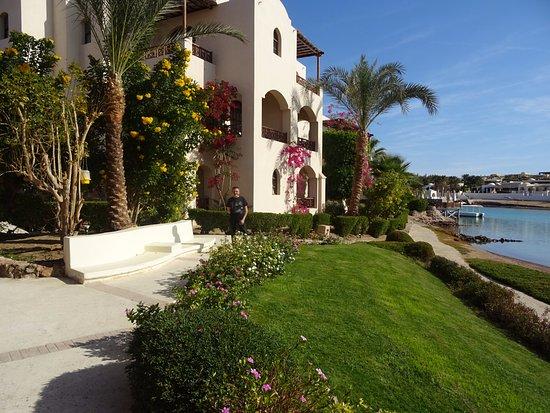 Les tres beaux jardin fleuri au bord de la lagune picture of hotel sultan bey resort el gouna - Les jardins de la lagune oualidia sylvie ...