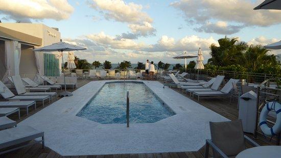 The Hotel of South Beach: Dach-Pool