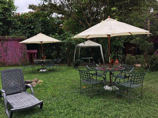 El Abrazo del Arbol: Garden area