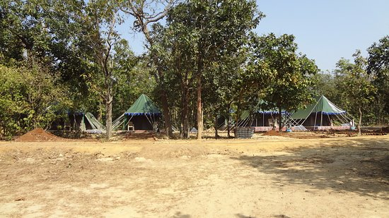Balasore, Indien: Tent Accommodation by Forest Department at Rassia