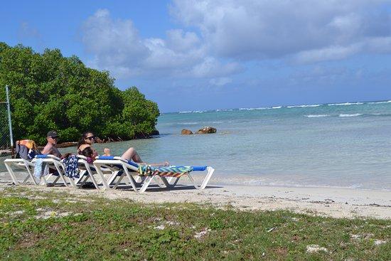 Royal Reef : playa privada