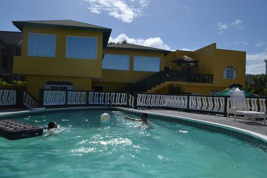 Royal Reef : Vista al hotel desde la piscina