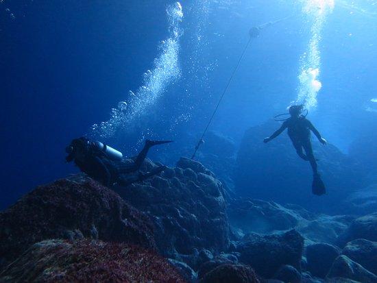 Saipan Mei Dive 1968 - Day Tours : こんなに深く潜ったのは人生初!