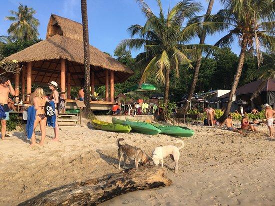 Nature Beach Resort Koh Chang: photo1.jpg