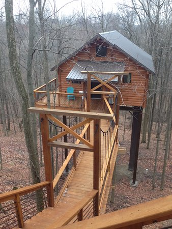 Pine Cove Lodging: Looking towards the tree house from the stairway