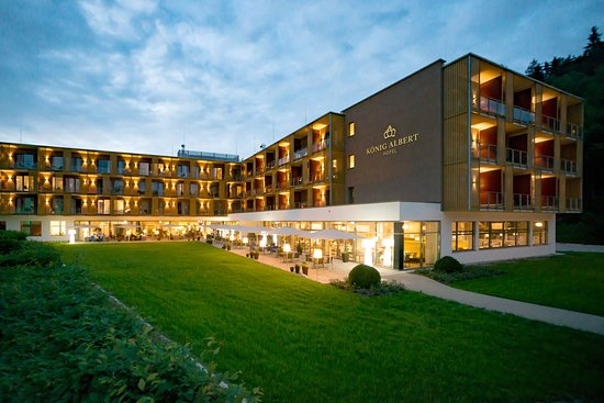 Hotel Konig Albert