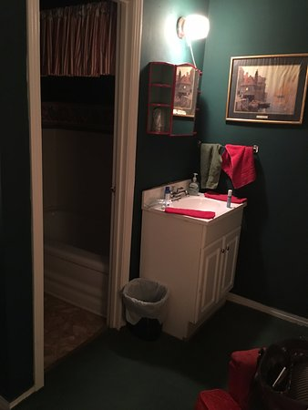 Red Boiling Springs, TN: Small bathrooms. Vanity is outside the bathroom in the room. We loved the coziness of everything