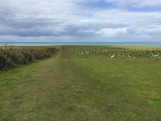 Waikawa, Nova Zelândia: Prato privato da percorrere