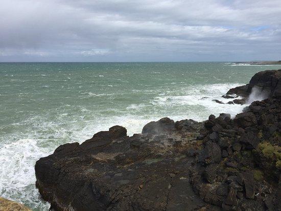 Waikawa, Nya Zeeland: Scogliera