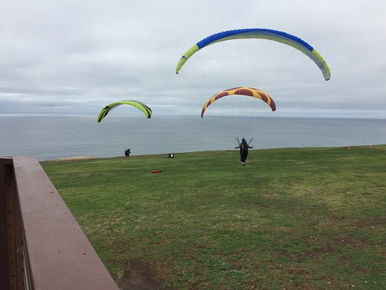 Torrey Pines Gliderport: Gliders at the Gliderport  12-10-2016