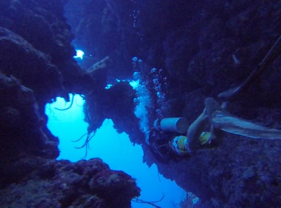 Cayman Turtle Divers: North End of Grand Cayman