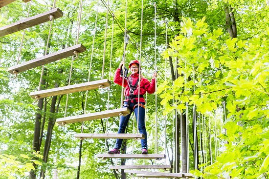 Minocqua, WI: We have a NEW Aerial Trekking Tour.  Challenge yourself on 14 elements, a rappel, 5 zips, and mo