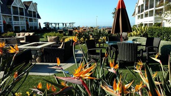 Zdjęcie Carlsbad Inn Beach Resort