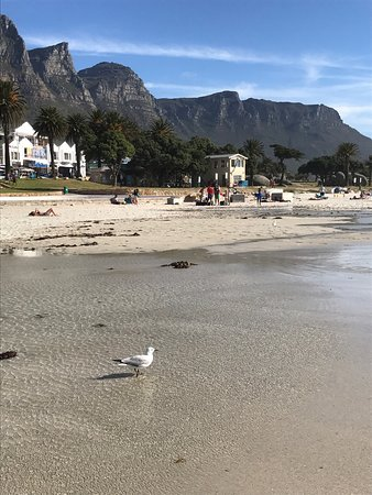 Camps Bay, Sudáfrica: photo5.jpg