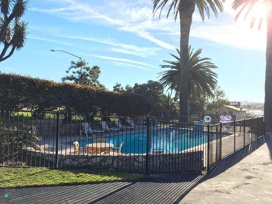 Ocean Palms Motel: photo2.jpg