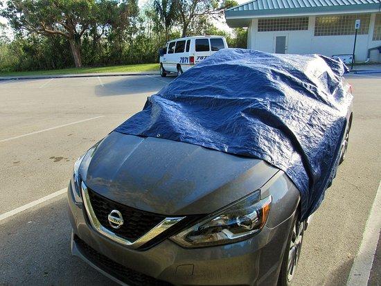 Royal Palm Visitor Center: Tarp over Car