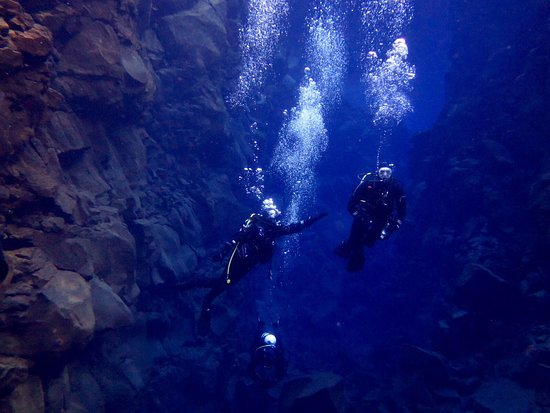DIVE.IS: IMG-20170130-WA0125_large.jpg