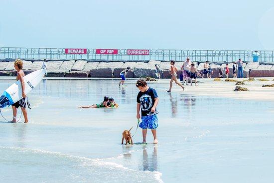 On the beach at JP Luby Surf Park, Corpus Christi, Texas. - photo by DL Dean
