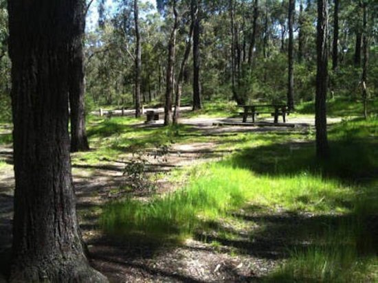Fairhaven, Australia: Distillery Creek Picnic Ground