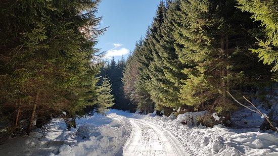 Sacele, Rumania: Vama54