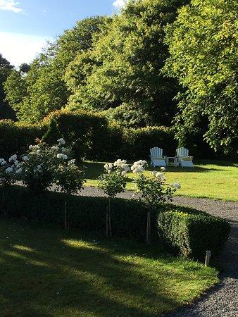 Marlborough Bed & Breakfast: Garden