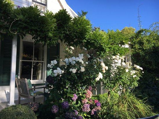 Marlborough Bed & Breakfast: Part of the garden