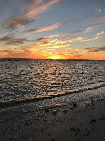 ไดมอนด์ เฮด บีช รีสอร์ท: Fantastic hotel. Lot of shells, sea urchin, & sponge on the beach. Sun set was beautiful. Had di