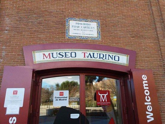 Museo Taurino: 8565