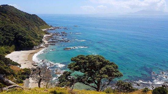 Mangawhai, Nueva Zelanda: Lovely beach on the way