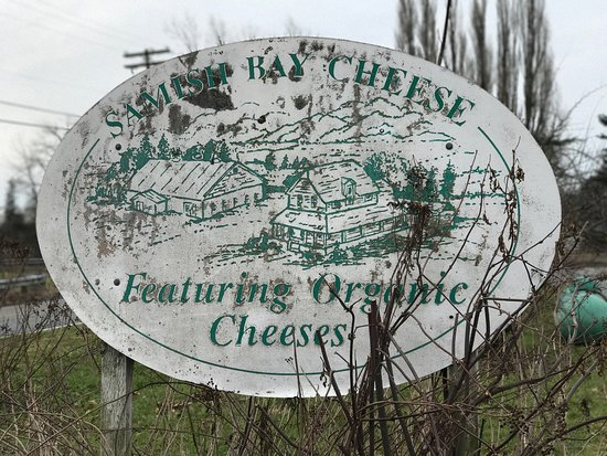 Bow, WA: Samish Bay Cheese is a must visit if you are in the area. Now serving wine and charcuterie platt