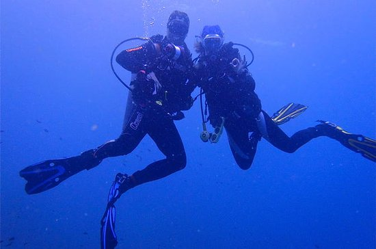 Certified Scuba Diving Day Tour in...