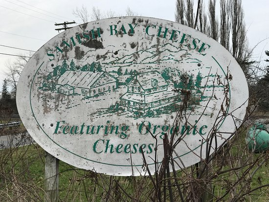 Samish Bay Cheese / Rootabaga Country Farm