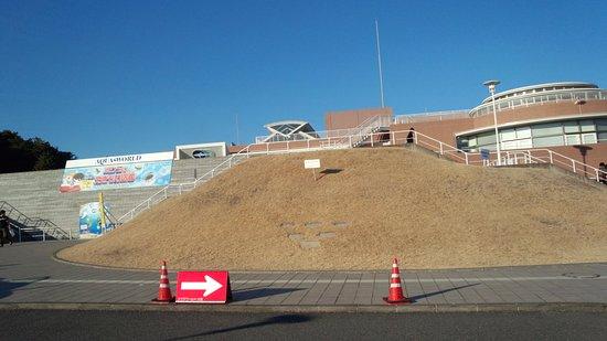 Aqua World Ibaraki Prefectural Oarai Aquarium: 駐車場から