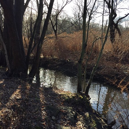 Teaneck Creek Conservancy