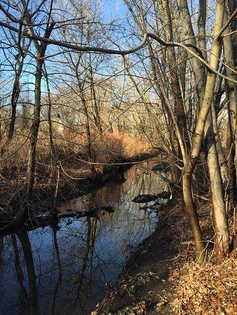 Teaneck, Nueva Jersey: photo3.jpg