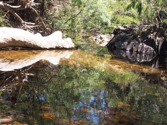 Briagolong, ออสเตรเลีย: Down the stream