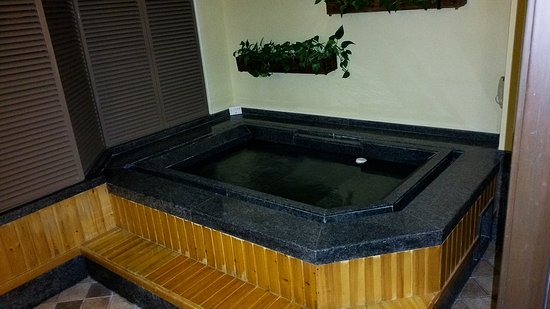 Chun Hui Yuan Resort: Hot spring hot tub in every room