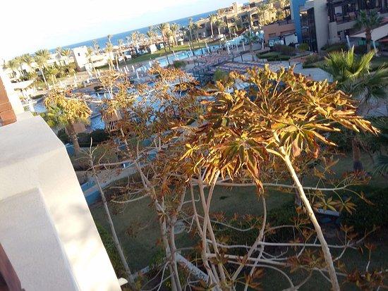 Imagen de The Palace Port Ghalib