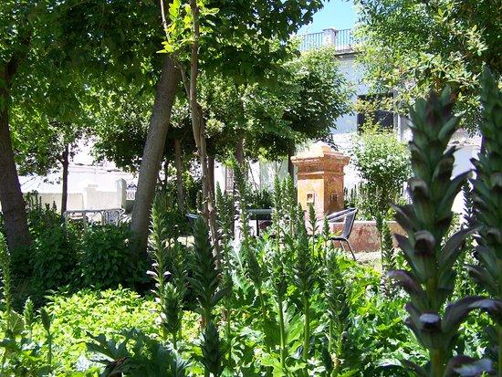 Pitres, สเปน: terraza