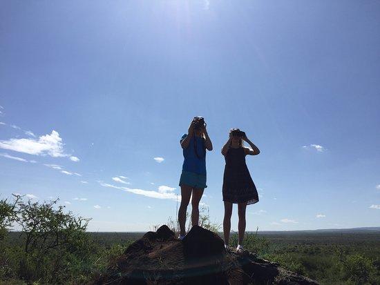 Satao Elerai: On the lookout
